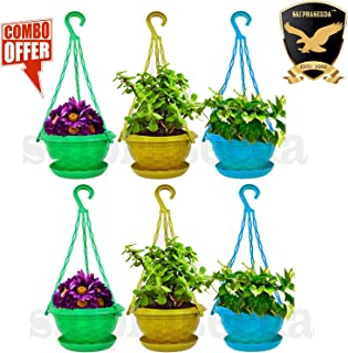 SAI PRASEEDA Hanging pots for Plants Balcony (Pack of 6`s) Multi Colour with Water Tray