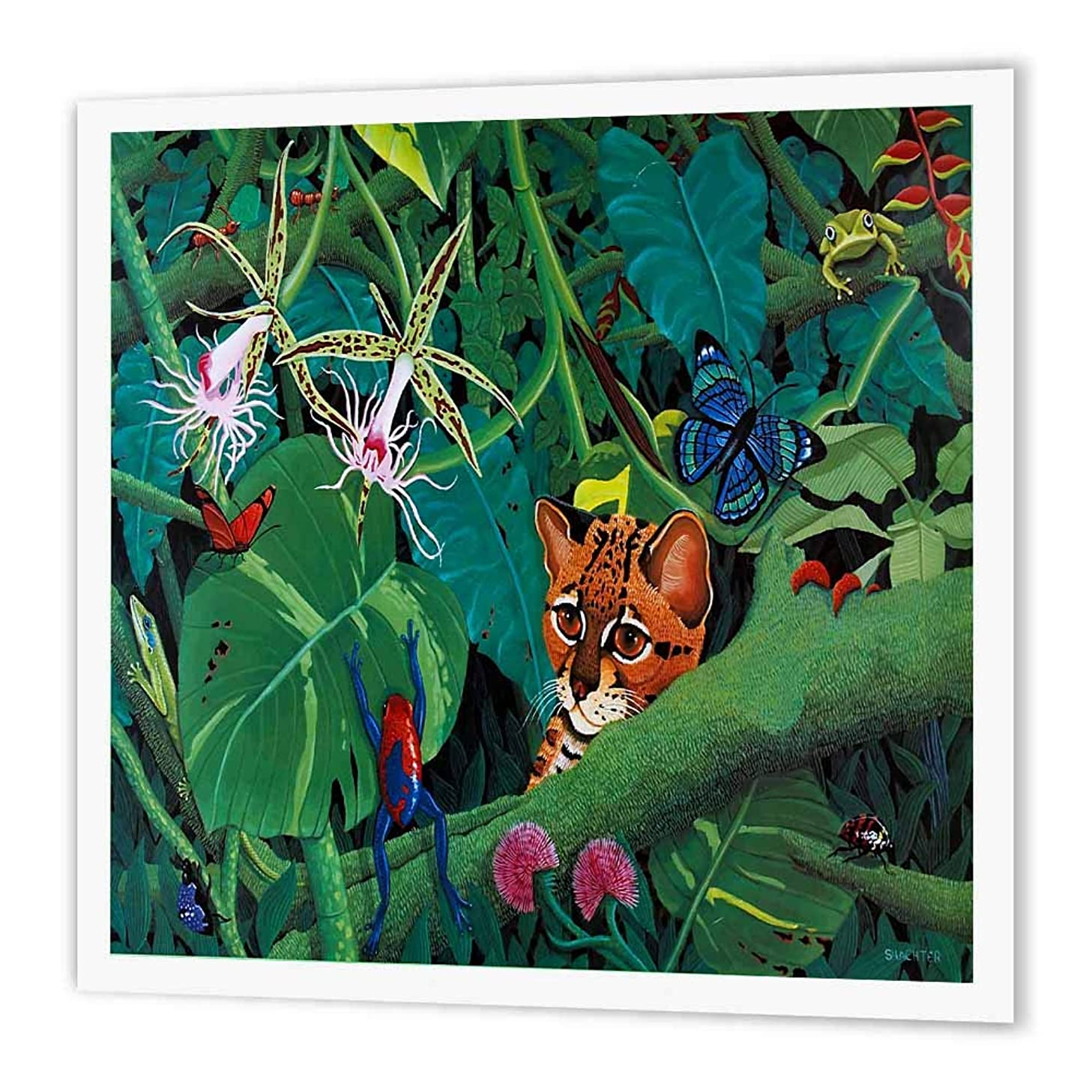 3dRose ht_3216_2 Rainforest Margay-Iron on Heat Transfer Paper for White Material, 6 by 6-Inch