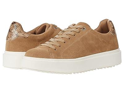 Steve Madden Charlie-S Sneaker