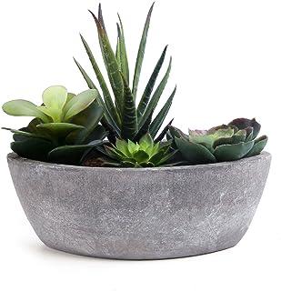 ComSaf Cactus Artificial Talla Pequeña Plásticas, Decorativas Suculentas Plantas Artificiales Decoración para Mesa de Comedor Sala de Estar Idea Regalo para Cumpleaños Boda Navidad
