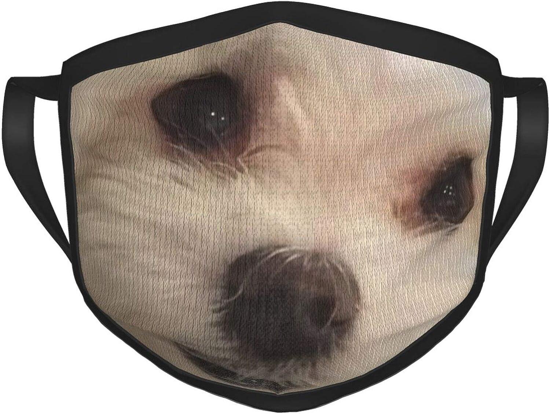 LANJYF 2 Packs Reusable Mouth Wear, Constellation Pisces Unisex Face Cloth