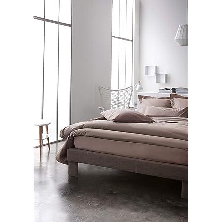 Today Drap Plat Coton-Beige-240x300 cm