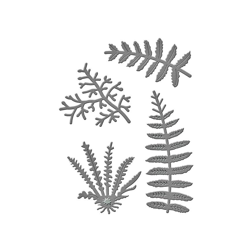 Spellbinders S2-197 Ferns D-Lites Etched/Wafer Thin Dies