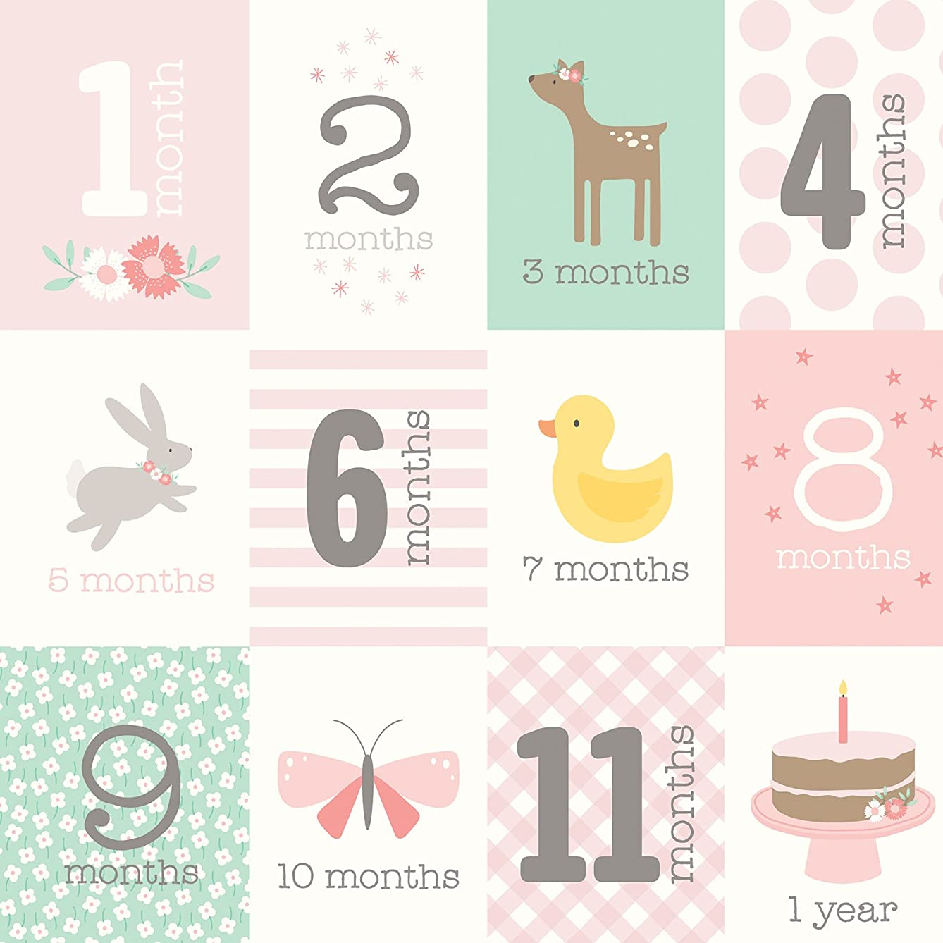 American Crafts 341356 Months Baby Girl Paper, Multi