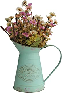 HyFanStr French Style Mini Metal Vases for Flowers Rustic Pitcher Plant Garden Decor