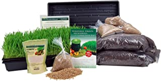 Living Whole Foods Certified Organic Wheatgrass Growing Kit - Grow & Juice Wheat Grass: Trays, Seed, Soil, Instructions, W...