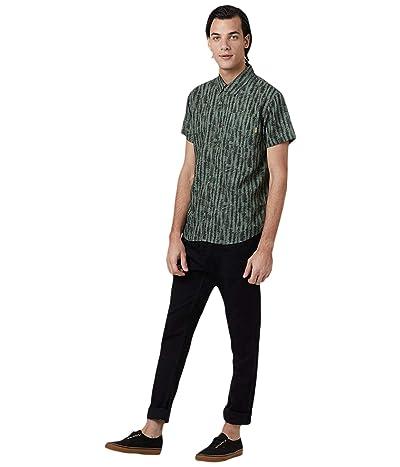 tentree Hemp Short Sleeve Button-Up (Forest Green/Tree Stripe All Over Print) Men