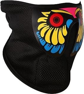 RTJOY LED Costume Mask Flashing Light up Mask for Halloween Costume Parties Rave Festivals Carnivals …