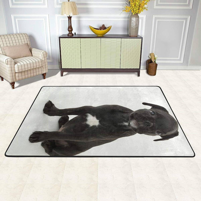 MALPLENA French Bulldog Rugs for Living Room Doormat Carpet Floor Mats shoes Scraper for Living Room Dining Room Bedroom Kitchen Non Slip