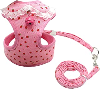 Didog Adjustable Pet Mesh Vest Harness and Leash Set with Cute Bell for Puppy Small Medium Dogs and Cats