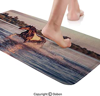 Horses Rug Runner,Horse Galloping Forward in Lake Spirit Winds Emblem of Freedom and Stability Theme,Plush Door Carpet Floor Kitchen Decor Mat with Non Slip Backing,48 X 17.7 Inches,Blue Brown