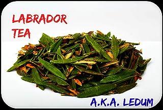 Dried Marsh Labrador Tea/Wild Rosemary/Ledum palustre/Rhododendron tomentosum/Northern Labrador Tea (16 OZ or 454 gr.)