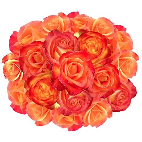 Flowers Delivery On Amazon Bouquet Of 25 YELLOW AND ORANGE Fresh Roses Delivered With Free Flower