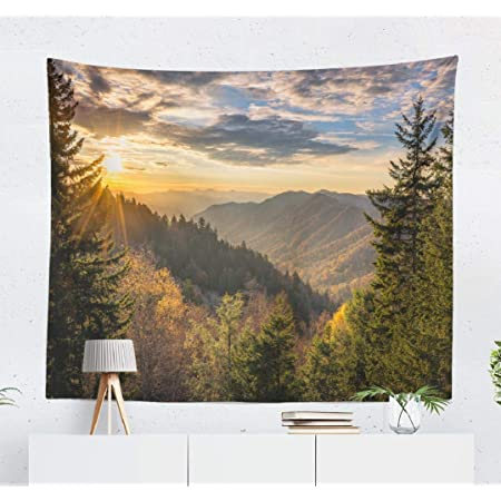 Kjong Autumn Sunrise Great Mountains Tennessee Great Forest Woods National Sunrise North Country Wilderness Park Decorative Tapestry 50x60 Inches Wall Hanging Tapestry For Bedroom Living Room Everything Else