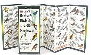 oregon backyard birds