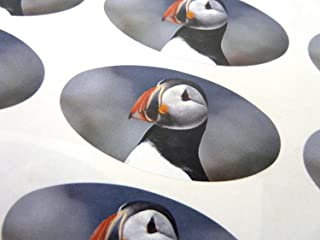 Minilabel Pack Of 30 Puffin, Seabird 51X25mm Oval Seal Labels, Stickers For Craft, Decoration, Gift Wrapping, Presents, Envelopes, Bags Or Cards