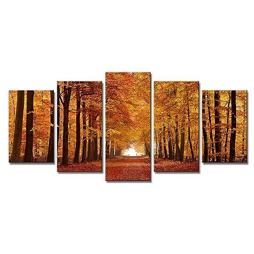 Autumn Landscape Canvas Wall Art Amazon Co Uk