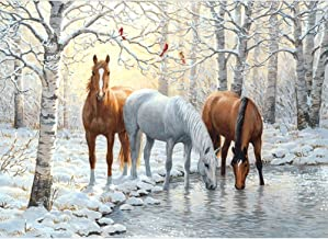 5D Diamond DIY Painting by Number Kits , AxiEr Diamond Crystal Rhinestone Embroidery Paintings Pictures Arts Craft , 11.8 x 15.7 Inches(Snow And Horses Drink In Winter)