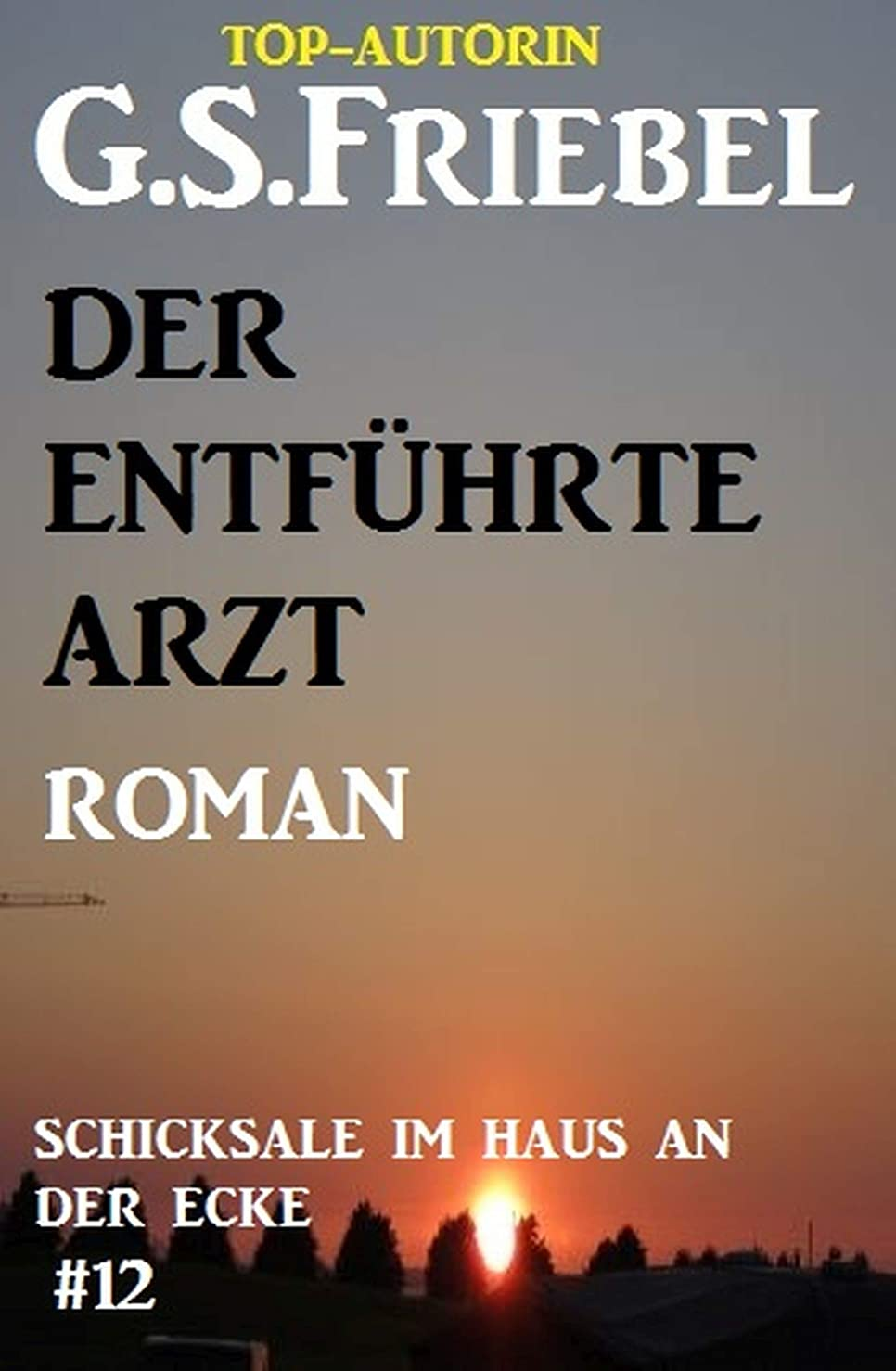 思い出すマイルストーンハンバーガーSchicksale im Haus an der Ecke #12: Der entführte Arzt (German Edition)