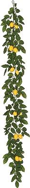 Vickerman FK170703 Everyday Lemon Garland