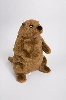 Douglas Mr G Groundhog