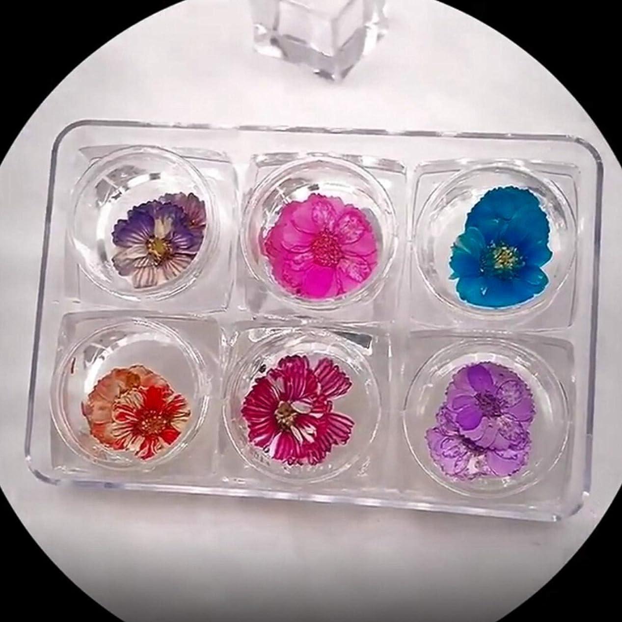 苗構想する苦OU-Kunmlef 人気の新しい6色ネイルアートアップリケジュエリーセット日本の乾燥花の花びら永遠の花の結晶装飾(None Picture Color)