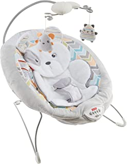 fisher price dome bouncer