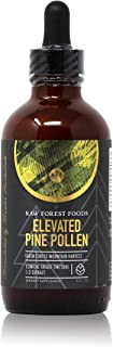 RAW Forest Foods - Elevated Pine Pollen Tincture with Stinging Nettle Root, Chen Pi and Zhi Zi (4 Ounce) - Support Endocrine System, Balance Hormones, Adaptogenic, Antioxidant and Nutrient Rich