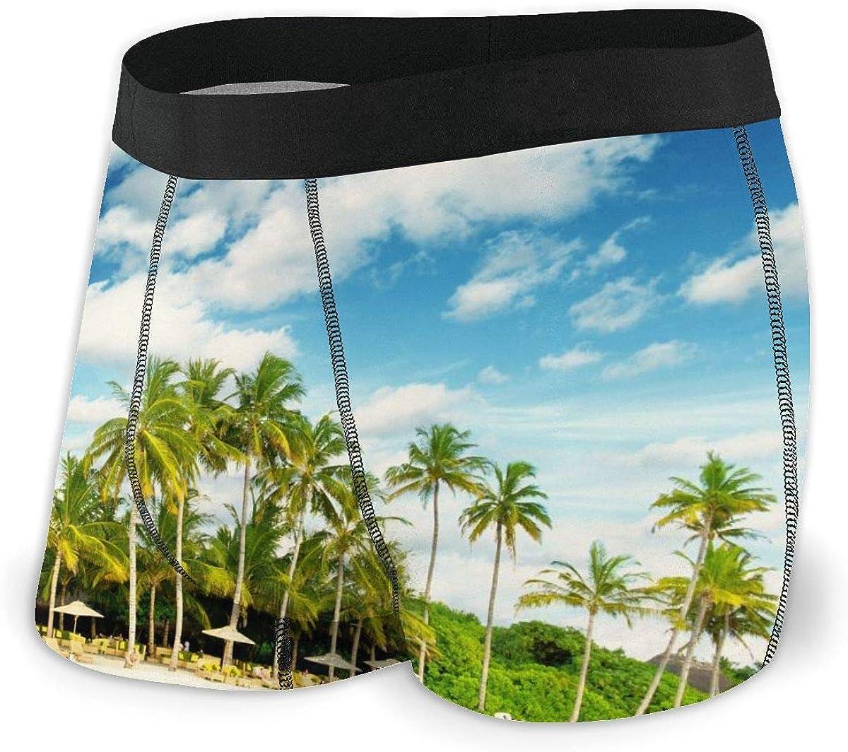 Mens Boxer Briefs Tropical Island Beach Paradise Island Breathable Underwear