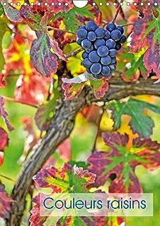 Couleurs raisins (Calendrier mural 2020 DIN A4 vertical): Grappes de raisins (Calendrier mensuel, 14 Pages )