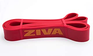 ZIVA PRO Portable Lightweight Resistance Band, Exercise Bands for Home Fitness, Stretching, Strength Training, Physical Th...