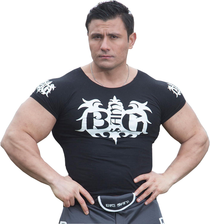BIG SAM SPORTSWEAR COMPANY Men's StretchShirt TShirt Shirt 2800