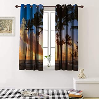 1GShophome Blackout Window Curtain Fort Lauderdale Beach Morning Sunrise in Florida USA Palm Trees Grommets Blackout Draperies for Bedroom (2 Pieces, 42