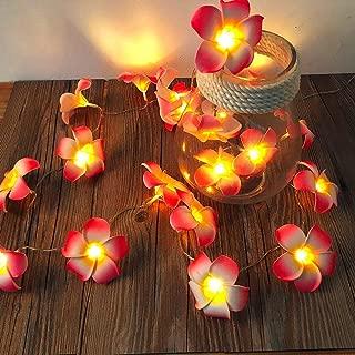 AceList 2 Sets Pink Flowers Frangipani 20 LED String Light Hawaiian Foam Artificial Plumeria Flower Battery Powered Fairy Starry Lights for Wedding Beach Party
