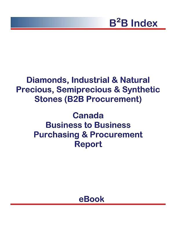 ヒープ災害ドアミラーDiamonds, Industrial & Natural Precious, Semiprecious & Synthetic Stones (B2B Procurement) in Canada: B2B Purchasing + Procurement Values (English Edition)