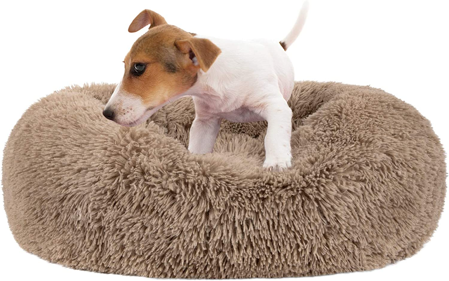 MIXJOY Calming Dog Bed for Small Dogs 100% quality warranty! Large Tucson Mall Medium Fur Don Faux