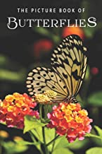 The Picture Book of Butterflies: A Gift Book for Alzheimer's Patients and Seniors with Dementia