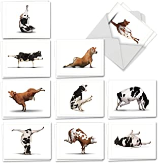 Bovine Nirvana - 20 All Occasion Blank Cow Cards with Envelopes (4 x 5.12 Inch) - Cute Farm Yoga Cards, Zen Animal Note Card Set - Assorted Boxed Stationery Gifts (10 Designs, 2 Each) AM6545OCB-B2x10