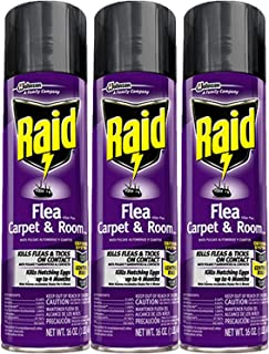 Best raid flea and carpet Reviews