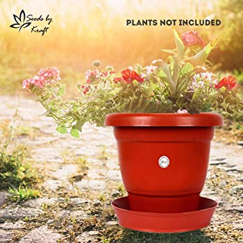 Kraft Seeds Gamla/Planter/Pot 8-inch (5 Pots) with Bottom Plate/Tray (Tray colour Terracotta/Red, 5 Pieces)