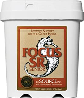 Source Focus Senior