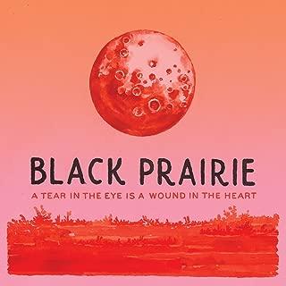 Best black prairie rock of ages Reviews