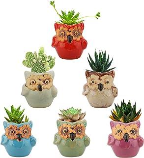 Lewondr Succulent Plant Pot, 6 Pack 2.8 Inch Mini Small Ceramics Owl Flower Bonsai Plant Pots for Cactus Herbs Housewarmin...