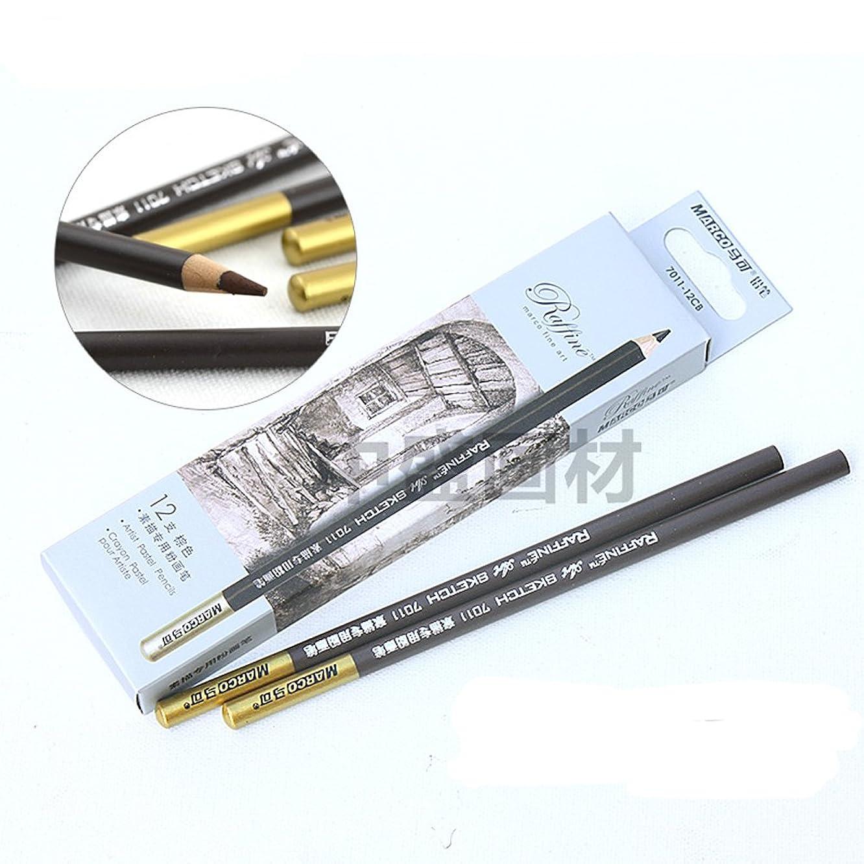 Artist Sketch Brown Pencil 12 PCS