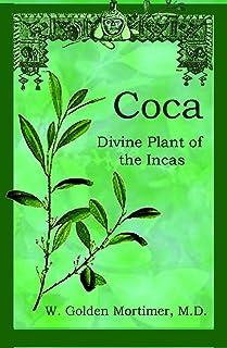 Coca: Divine Plant of the Incas