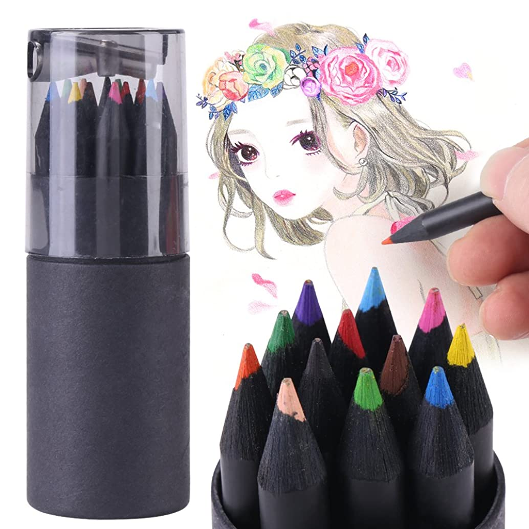 12 Color Drawing Sketching Painting Colorful Pencils Professional Black-Wood Colored Artist Pencil for Drawing Sketching Writting Office Home Working Use, 3.5 inch