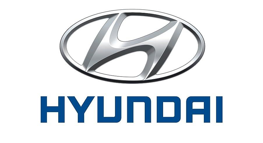 Genuine Hyundai 25386-1U100 Radiator Cooling Fan Motor