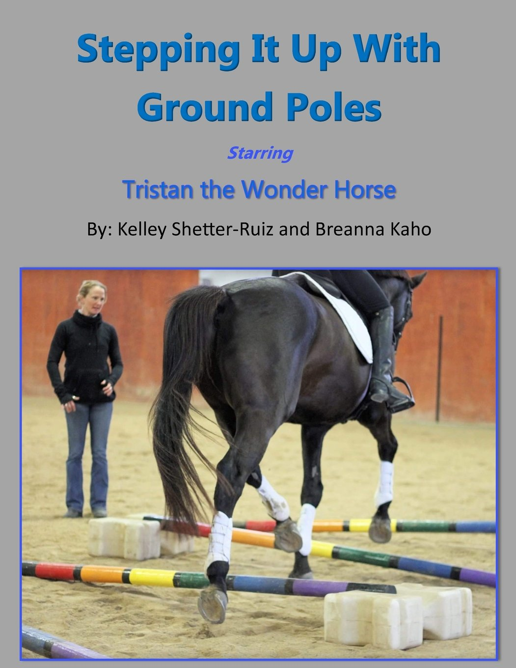 Image OfStepping It Up With Ground Poles Starring Tristan The Wonder Horse: Volume 2