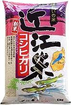【新米】滋賀県産 白米 「近江米コシヒカリ」10kg 令和元年産