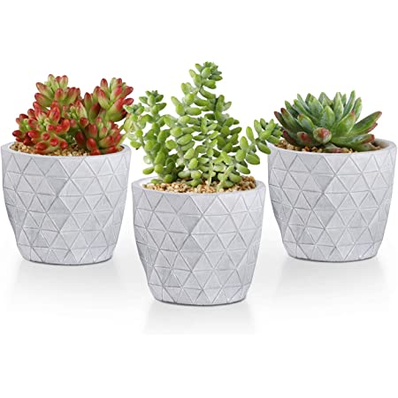 3PCS Table Decor Garden Succulent Planter Flowerpot Vase Cactus Bonsai Vase